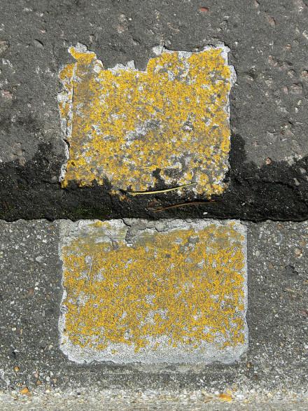 Streets: Emperor Rothko