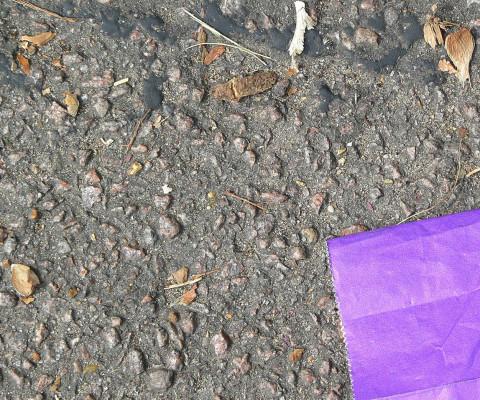 Incidental colour 17 blue bag & concrete