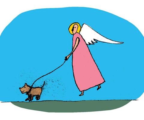 Angel dogwalker WG