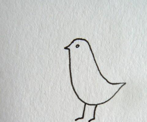 Bird b&w WG