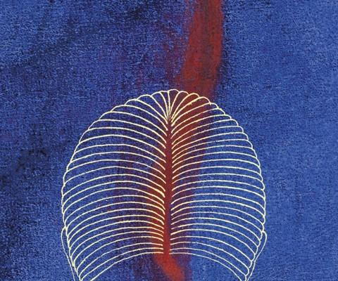 Book jacket: The Maimed (Dedalus Publishing)