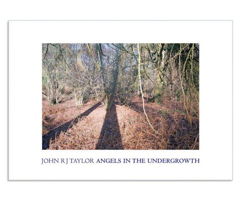 Book design: Angels In the Undergrowth